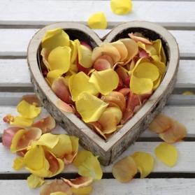 Saco de Pétalos Amarillos Naranjas