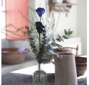 Rosa Individual Azul