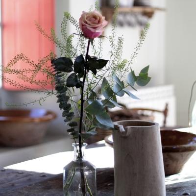 Rosa Individual Bicolor