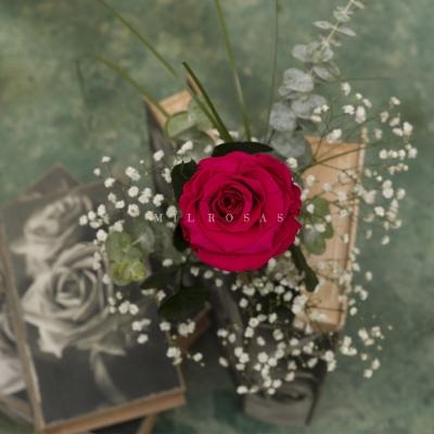 Rosa Individual Fucsia Bondad