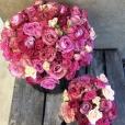Chic Rosas Frescas