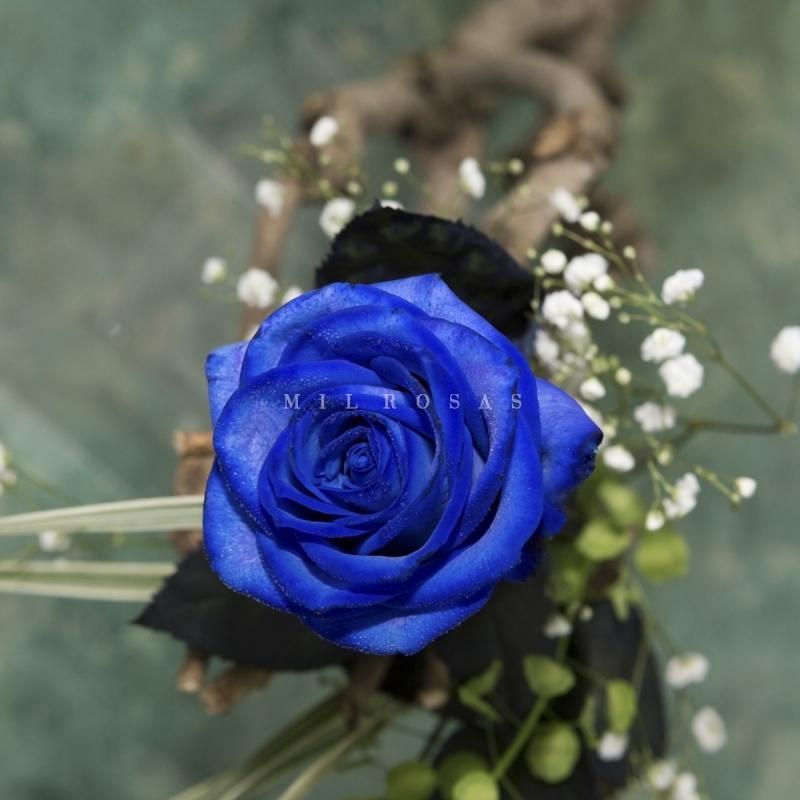 e19f8af4d Rosa Individual Color Azul Extra Preparada para Regalo