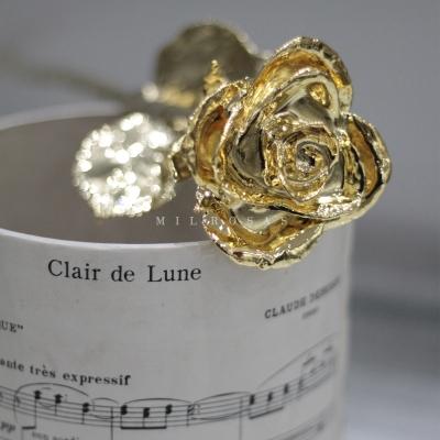 Gold Rose, Rosa de Oro