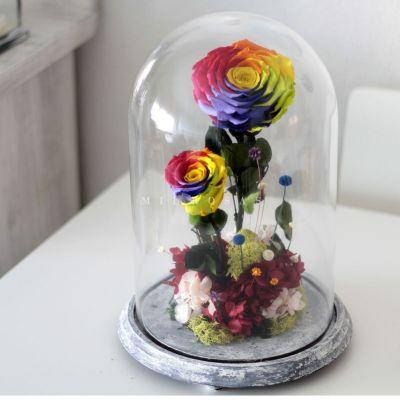 Rosa Joya Rainbow (Bella y Bestia)